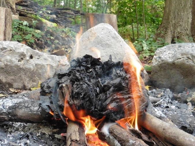 bible burning